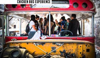 Chiken Bus